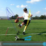 virtual kicking lesson