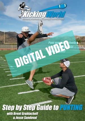 online punting video